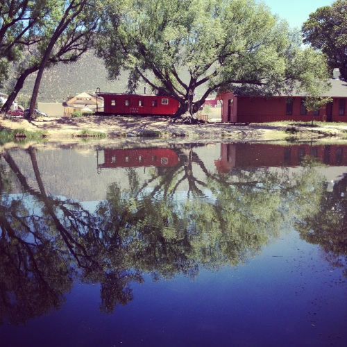a reflection of a red house in a pond