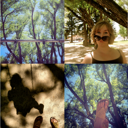 a collage of a park scene