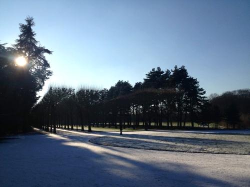 parc de sceaux snow 3