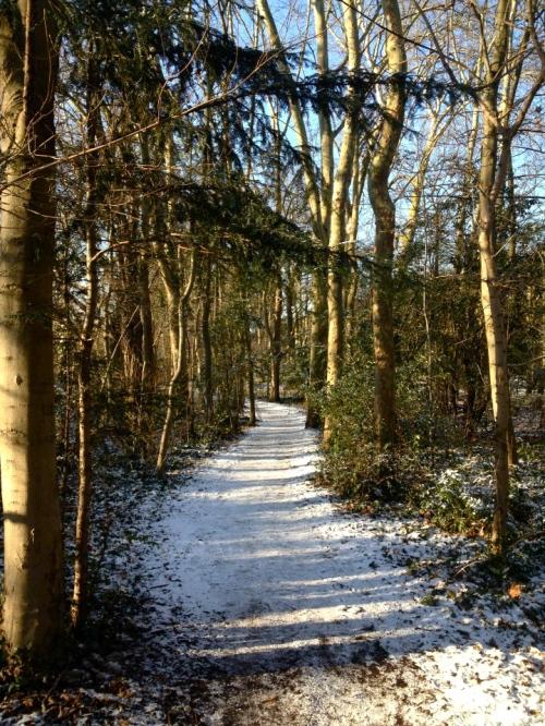 parc de sceaux snow 1