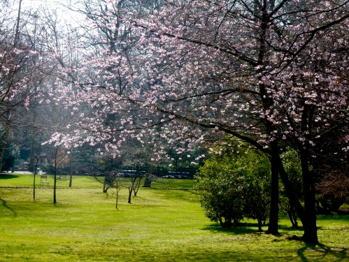 Jardin du Lux